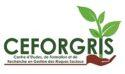 Le CEFORGRIS décroche un financement de 200000 USD de la Banque Mondiale