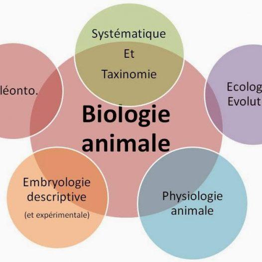 Département de Biologie Animale et Physiologie Animale
